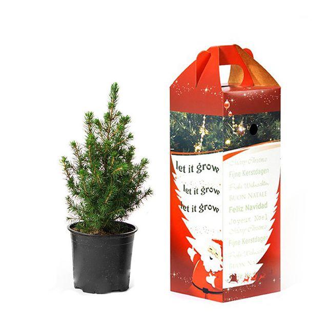 Kerstboompje voor het bureau in cadeau verpakking