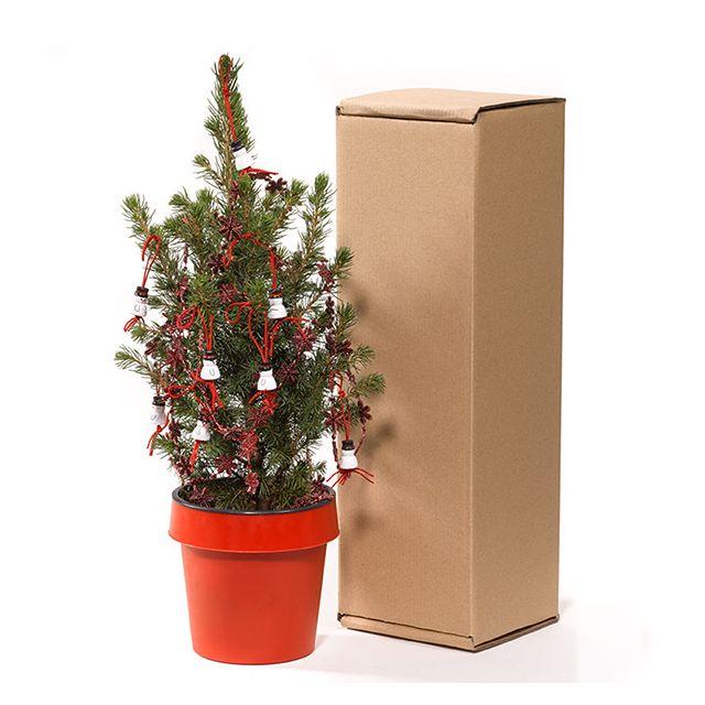 Kerstboompje in verzendverpakking voor op bureau
