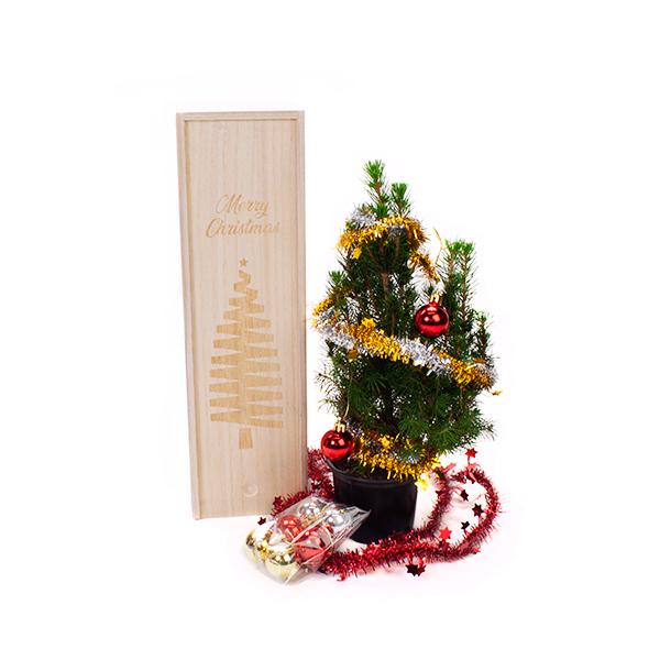mini kerstbomen